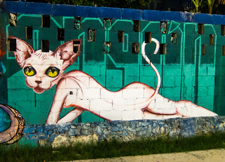 Cat - Street art on 'hidden' Fifth Avenue, Playa Del Carmen