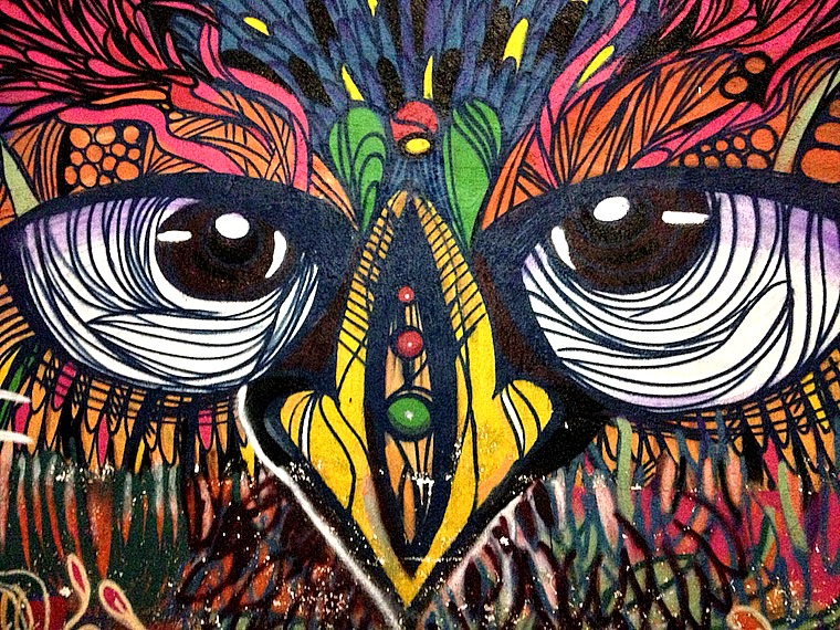 Owl - Street art on 'hidden' Fifth Avenue, Playa Del Carmen