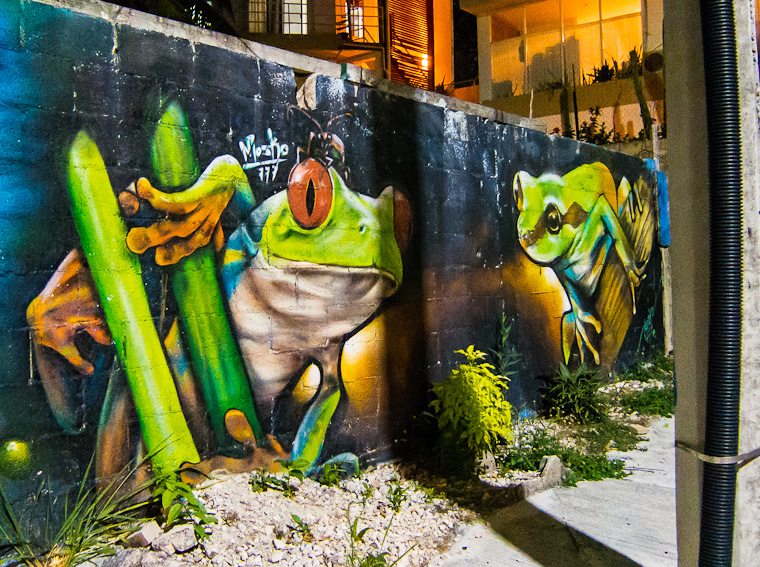 Frogs - Street art on 'hidden' Fifth Avenue, Playa Del Carmen