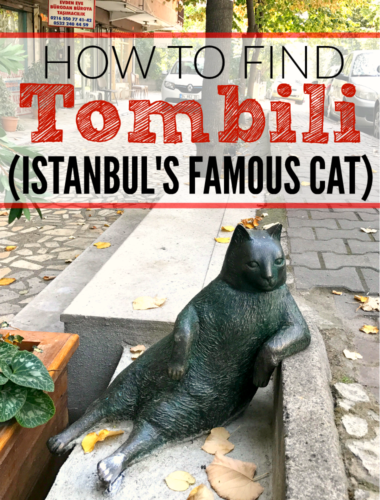 How to find Tombili