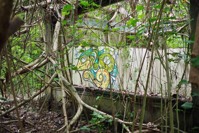 Overgrown street art at Taman Festival, and abandoned theme park in Bali